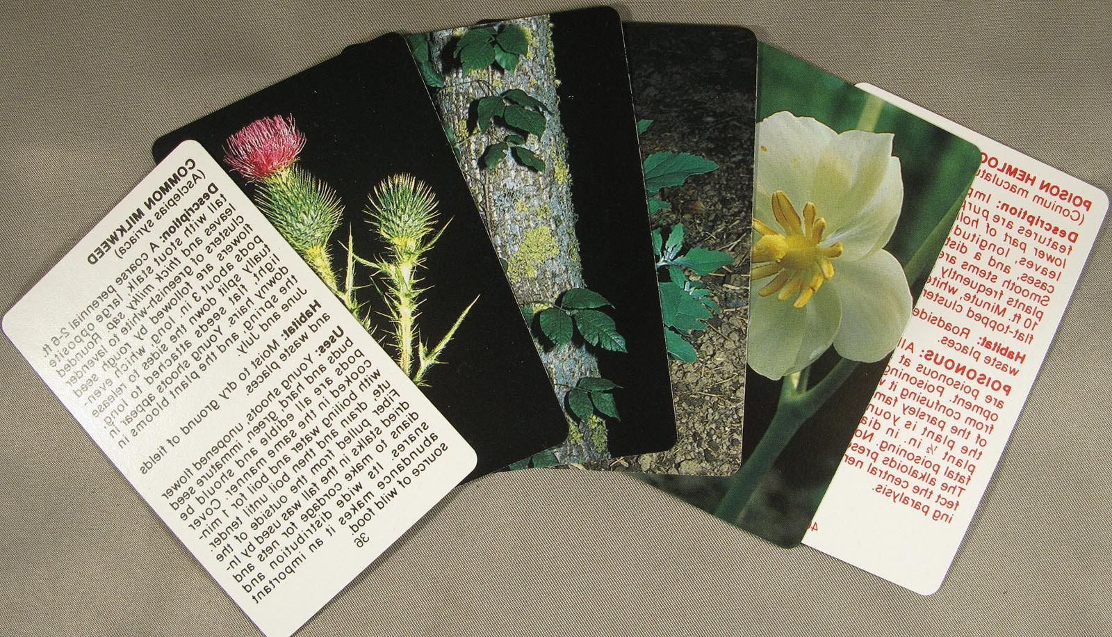 Edible Wild Plant Cards Foraging Hour Food Prepper Gear Kit Backpack E